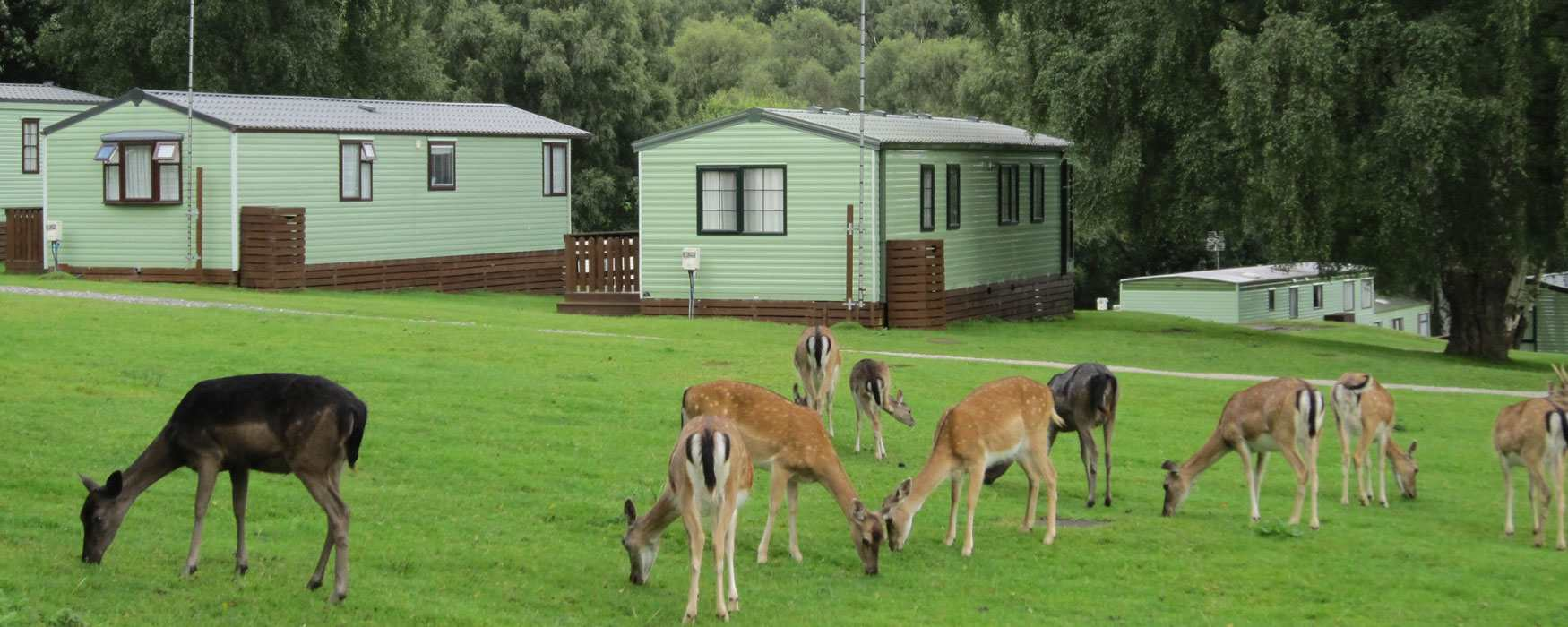 Holiday parks in lovely rural locations