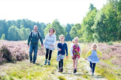 Cannock Chase family walking on heather heathland.