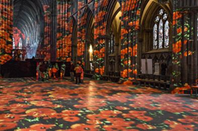 The spectacular Poppy Fields light show at Lichfield Cathedral