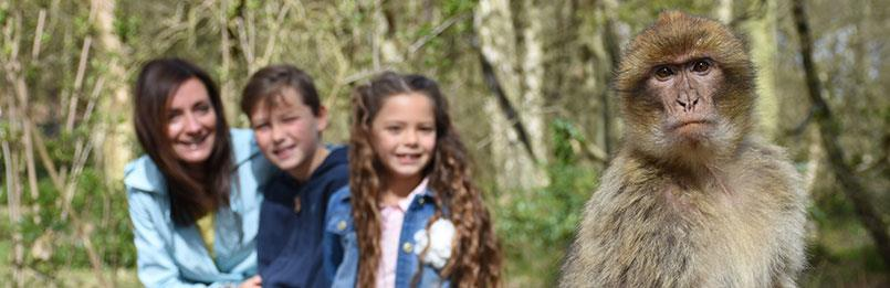 Competition - Win tickets for Family Attractions