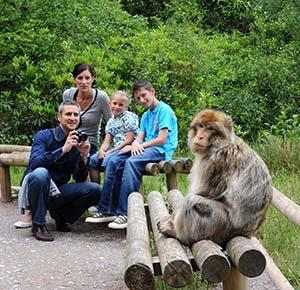 Monkey oblivious to family, dad with camera, sitting nearby (landscape)
