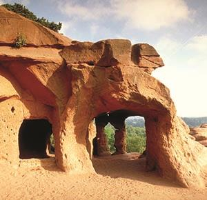 Sandstone caves at Kinver Edge (landscape)