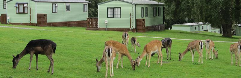Places to stay in Cannock Chase
