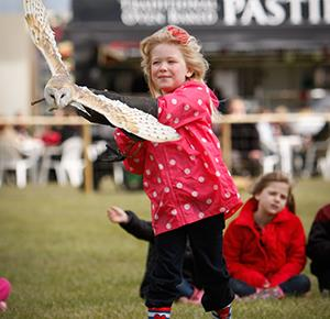 Girl tries falconry at Weston Park's Midland Game Fair