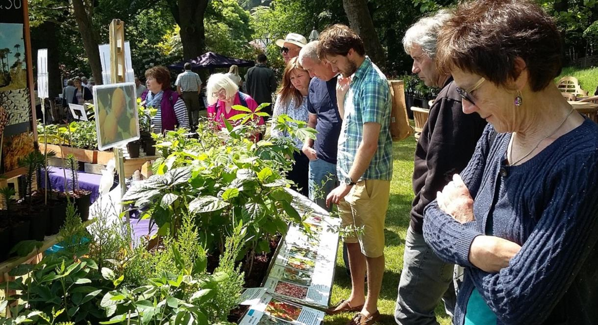 Summer Plant Hunters' Fair at Middleton Hall