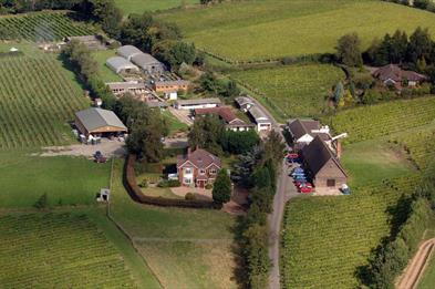 aerial view of Halfpenny Green Vineyard