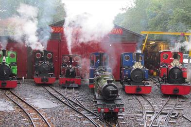Trains outside the sheds