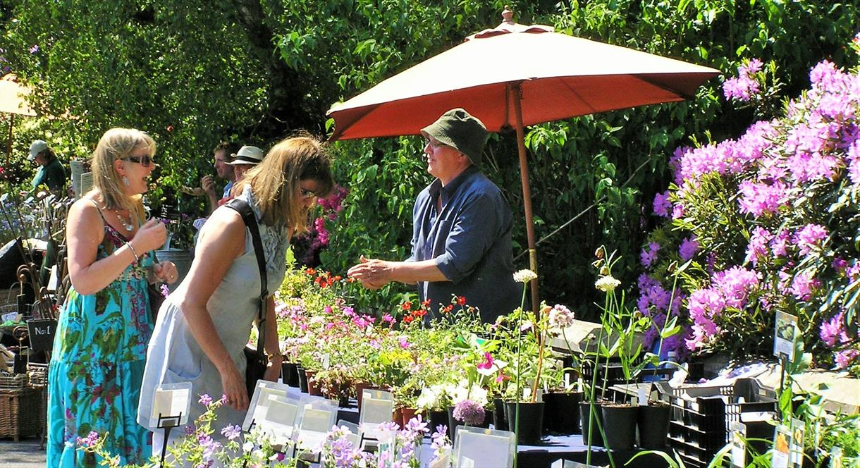 Plant Hunters' Fair at The Dorothy Clive Garden