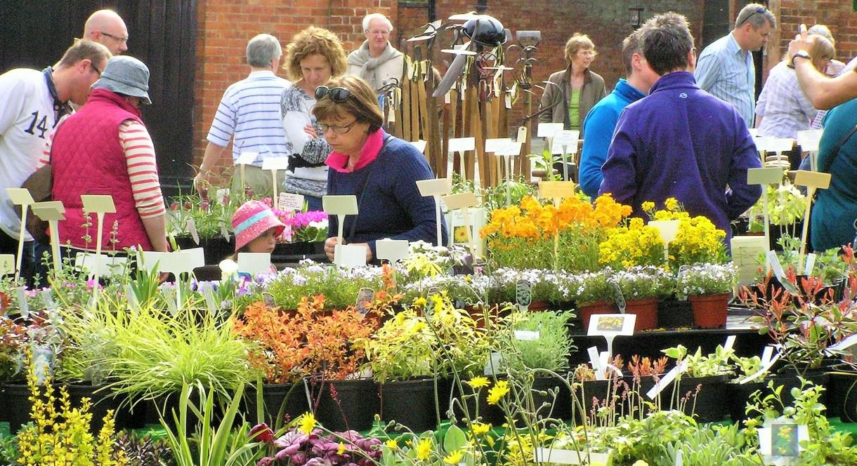 Autumn Plant Hunters' Fair at Weston Park