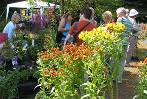 Summer Plant Hunters' Fair at The Dorothy Clive Garden