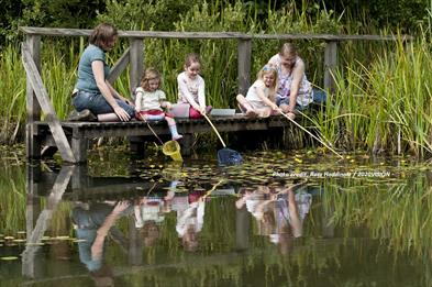 Get Wild Pond Dipping at The Wolseley Centre